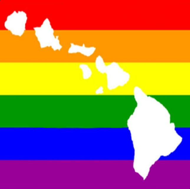 Image result for hawaii on gay conversion therapy
